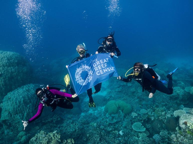 Scientists scaling up the data collection of The Great Barrier Reef