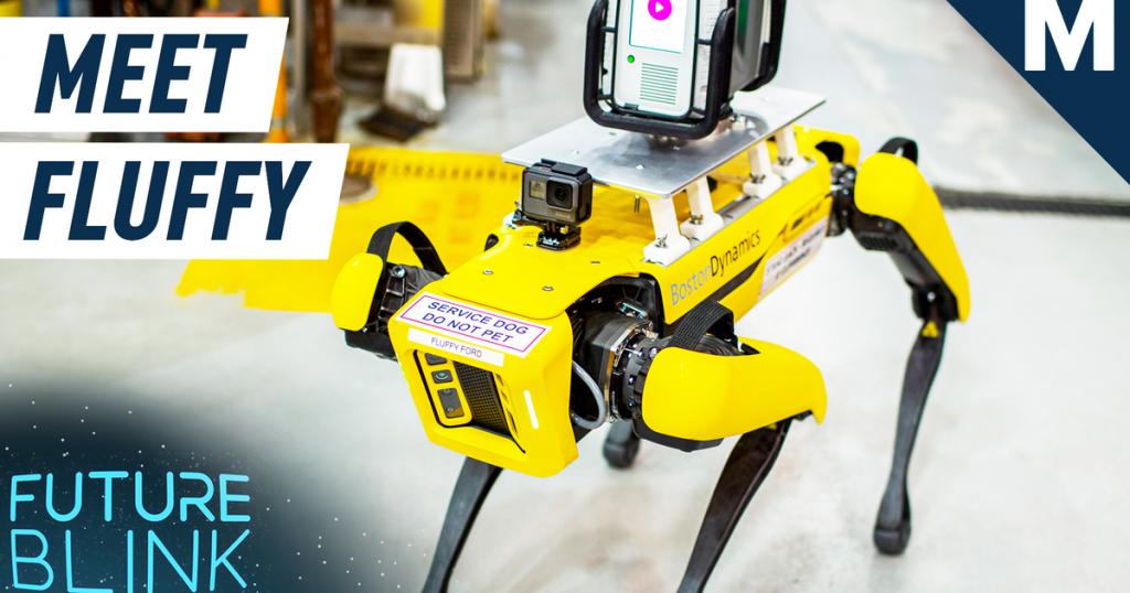 Boston Dynamics' robo-dog got a new nickname from Ford Motors — Future Blink