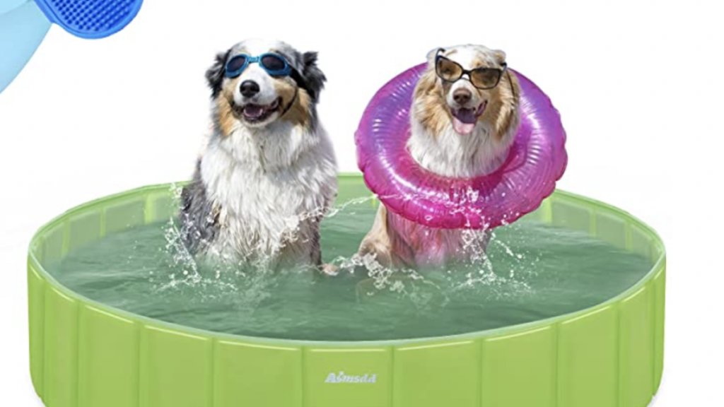 20 amazing gadgets your dog can't live without