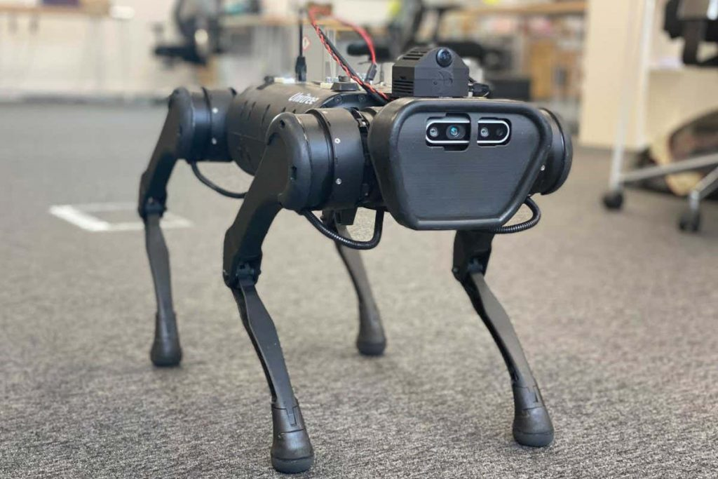 Artificial insect-inspired 'brain' can guide robotic dog through maze